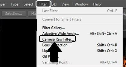 filter-camera-raw-filter